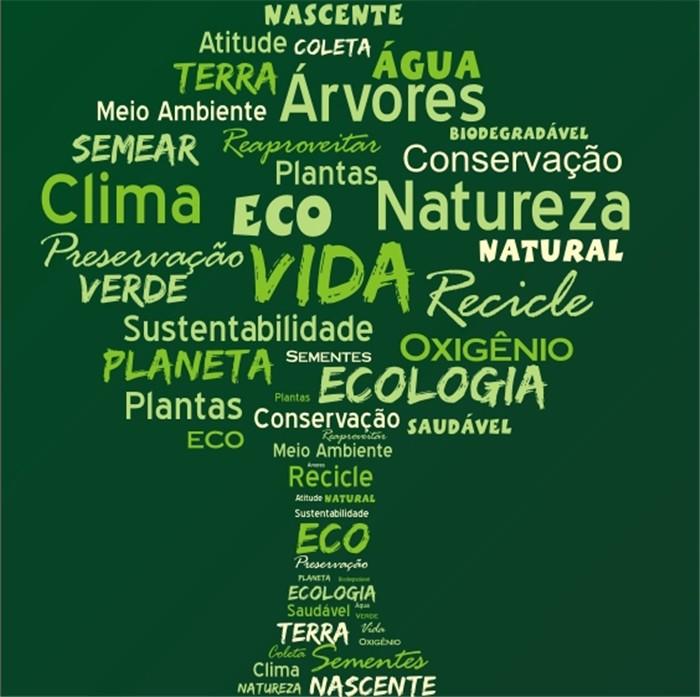 Well-known Amar a natureza e apreciar a vida, no Dia Mundial do Meio Ambiente  CB47