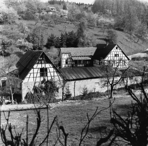 Paul-Geheeb-Straße 19