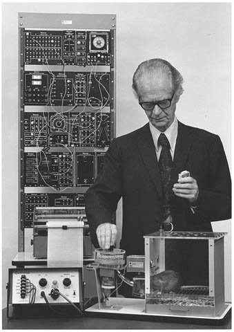 Skinner experimentando