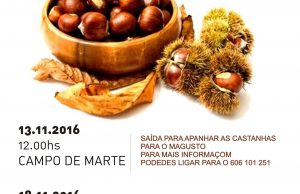 magusto2016