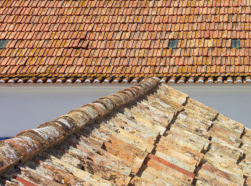 """""""Dous tipos de cobertura típicos: a telha tradicional e a telha plana."""""""